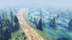 Carretera de la selva para Spin Tires
