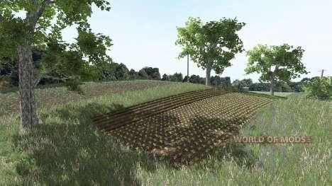 Rolnikowo para Farming Simulator 2017