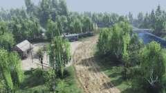 Birch grove para Spin Tires
