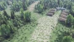 En las profundidades del bosque v2.0 para Spin Tires