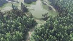 Verde valle para Spin Tires