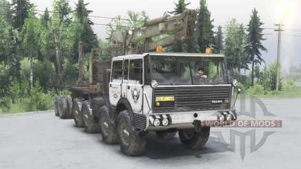 Tatra T813 TP 8x8 1967 Kings Off-Road 2 grey para Spin Tires