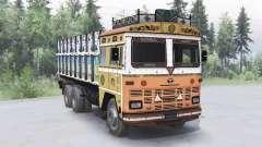 Tata 2515 para Spin Tires