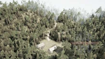 Colinas del bosque para MudRunner