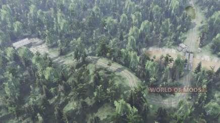 Gran bosque para Spin Tires