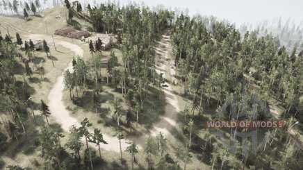 Corte hacia abajo en las líneas de energía en el Oso woods para MudRunner