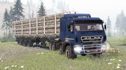 MAZ-6516B9-450-000 para Spin Tires