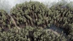Amny bosque para MudRunner