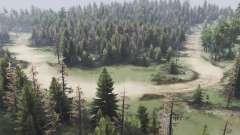 El valle del bosque para Spin Tires