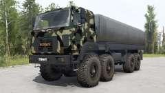 Ural-M 532362-70 pintura de camuflaje para MudRunner