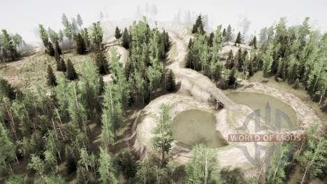 Forest watch 2 para Spintires MudRunner