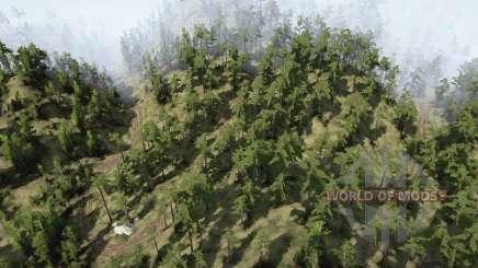 Carreteras de montaña forestales para MudRunner