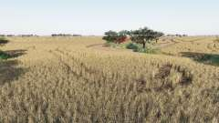 Western Australia v2.0 para Farming Simulator 2017