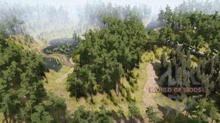 Bosque Verde para MudRunner