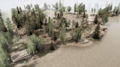 Campo pantanoso para MudRunner