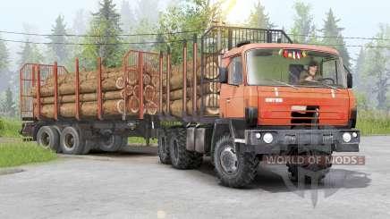 Tatra T815〡adass carga propia para Spin Tires
